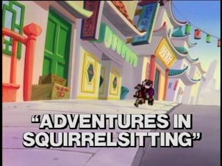 Adventures in Squirrelsitting