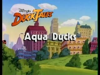 Aqua Ducks