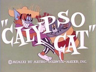 Calypso Cat