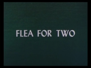 Flea-For-Two.jpg