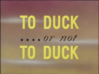 To Duck… or Not to Duck