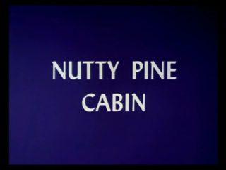 Nutty Pine Cabin