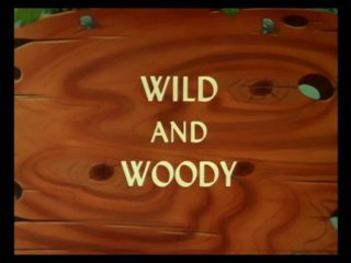 Wild And Woody